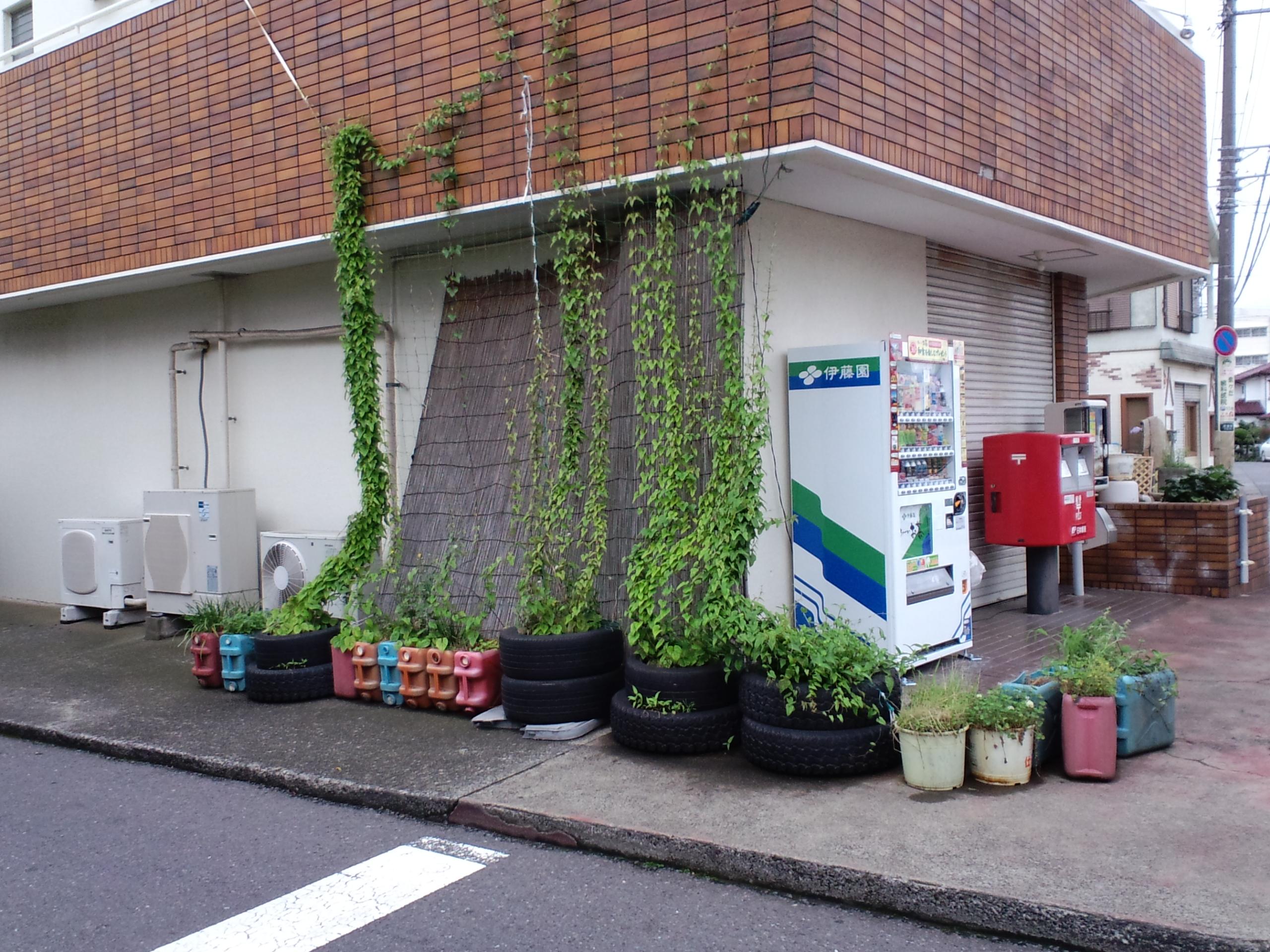 夏の定番グリーンカーテン